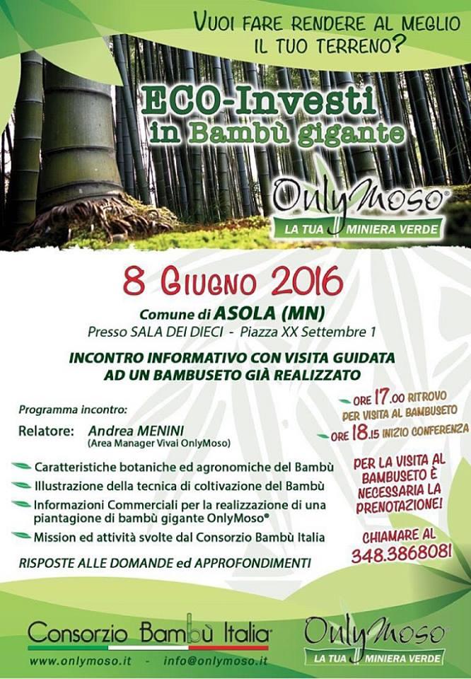 bambù-8-giugno-2016-asola
